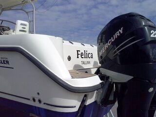 Venatarra Felica